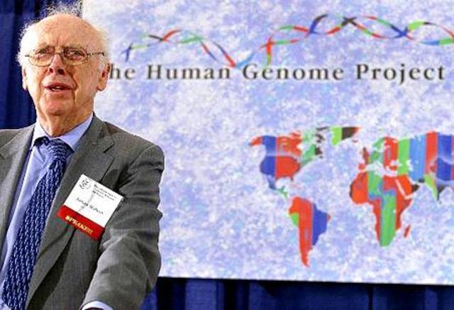 Die genetische Wendeltreppe