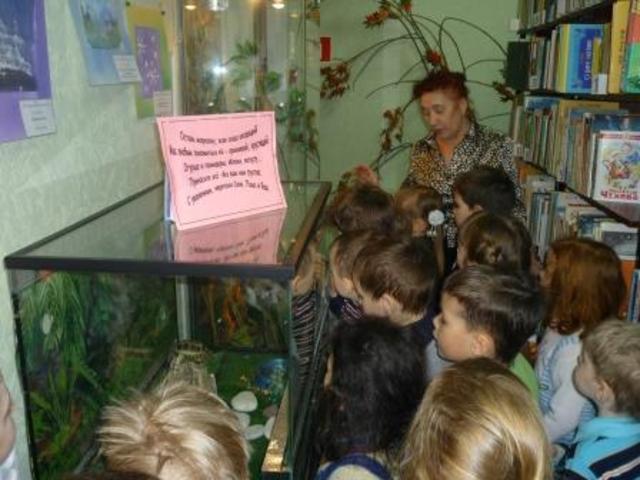 «Экологическое воспитание».