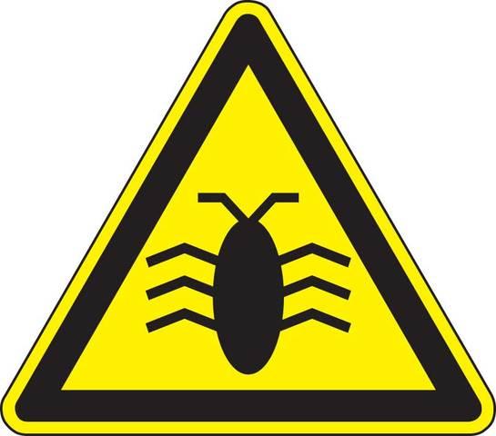 Primer bug informatico
