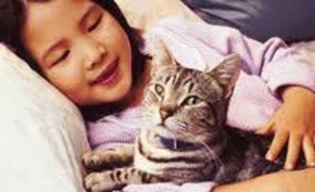 Cuando yo tenía doce años, yo acariciaba a mi gato.