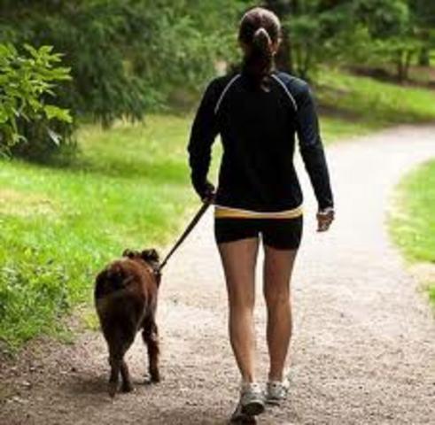 Cuando yo tenía trece años, yo paseaba el perro del vecino.