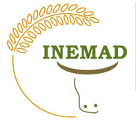 criação da INEMAD