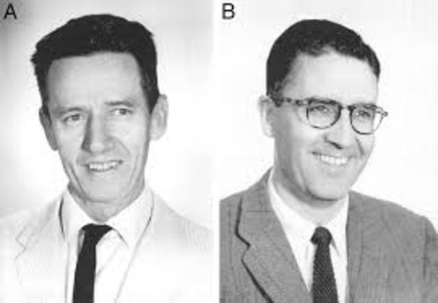 Robert Briggs y Thomas King usan transferencias nucleares de células adulto para clonar ranas.