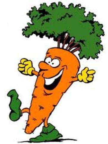 Steward crece la primera zanahoria completa a partir de células completamene diferenciadas de raíces de zanahoria.