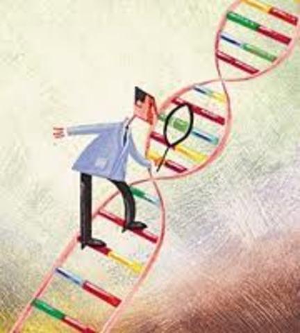 los científicos desarrollan las primeras técnicas para secuenciar con rapidez los mensajes químicos de las moléculas del ADN.