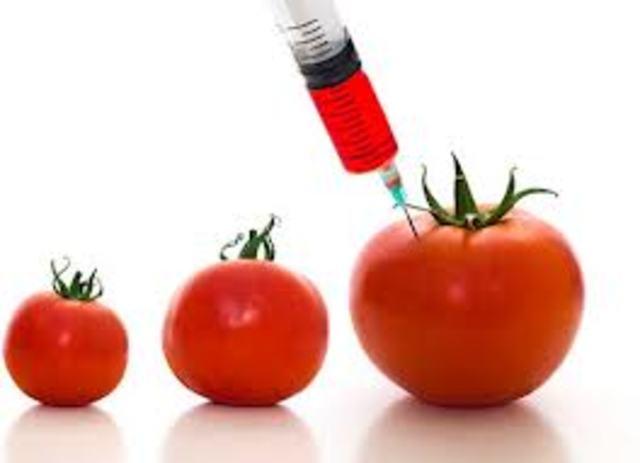 se comercializa en California el primer vegetal modificado genéticamente (un tomate).