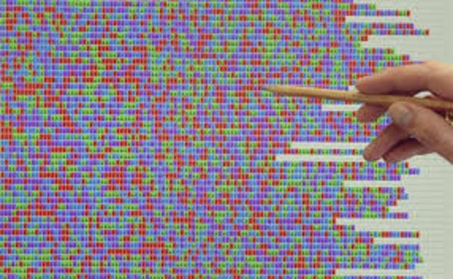 Se completa el genoma de E. coli.