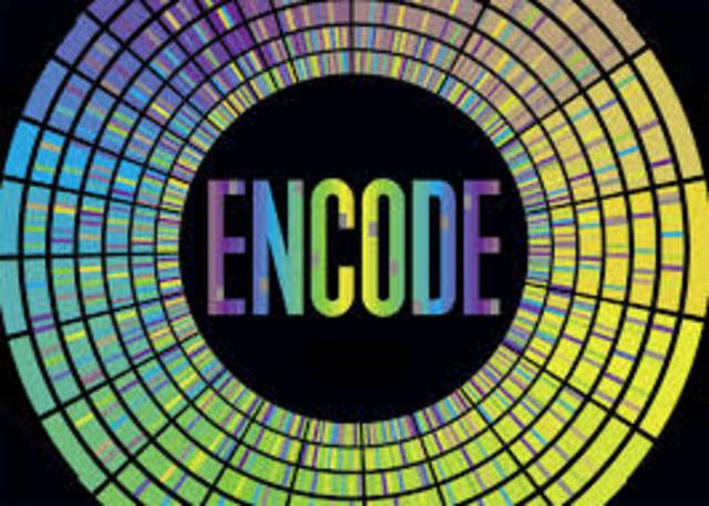 se termina el proyecto piloto ENCODE