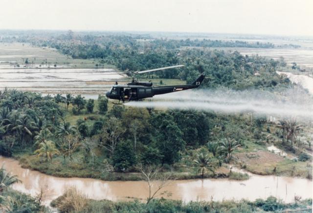 American Troops Enter Vietnam