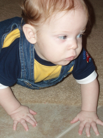 Learned to crawl