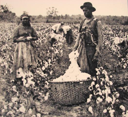 Rise of Slavery