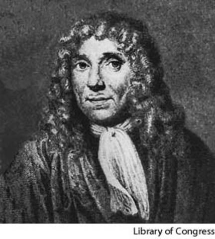 Auton van Leeuwenhoek