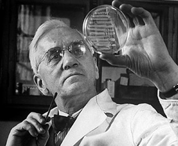 Antibiotics Were Discovered