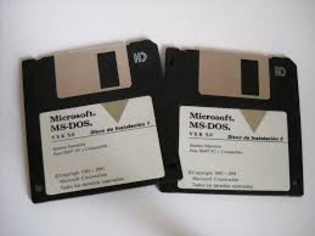 MS - DOS 5.0