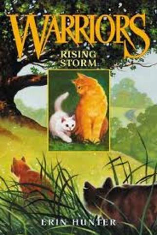 Warriors: Rising Storm