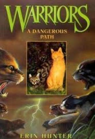 Warriors: A Dangerous Path