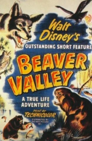 Walt Wins One Academy Award