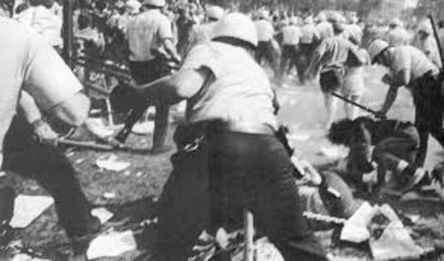 Phoenix Election Riot