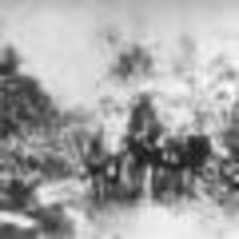 Fin de la guerra Colombo Peruana
