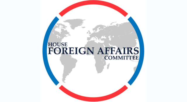 Appointed head of Foreign Affairs Committee