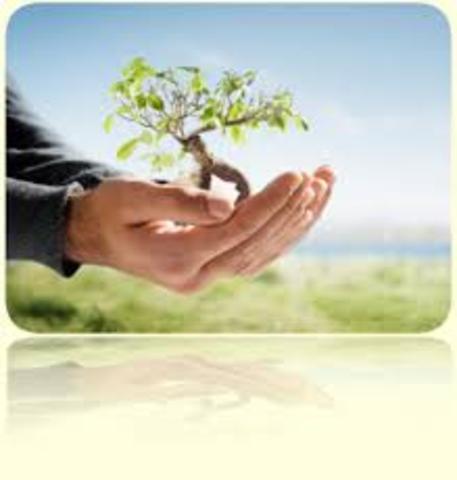 Educación ambiental vs educación para la sustentabilidad