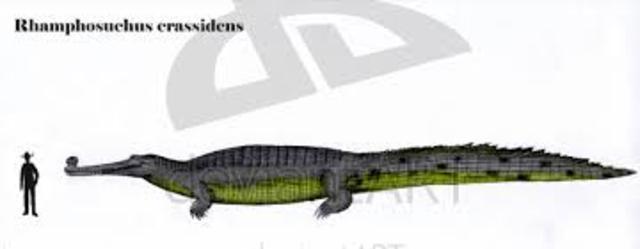 Rhamphosuchus Roamed the Earth