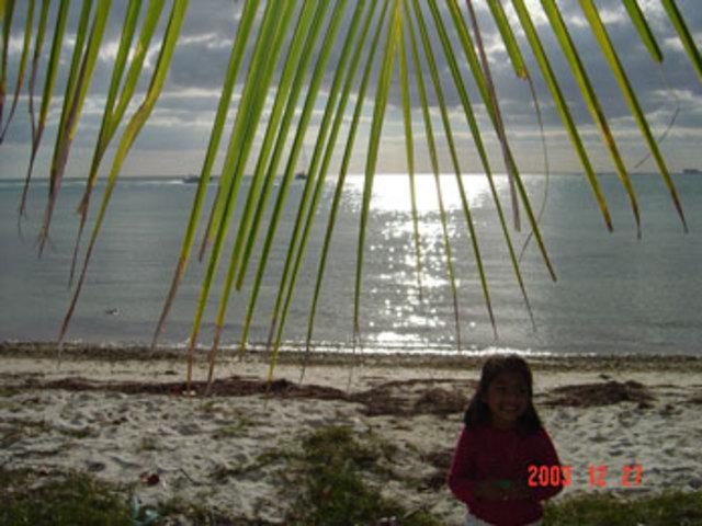 My first beach trip to Miami , FL