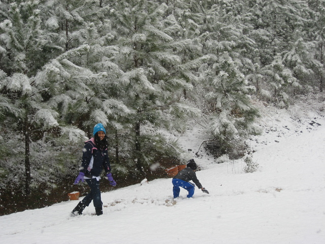 Enjoyed the snow