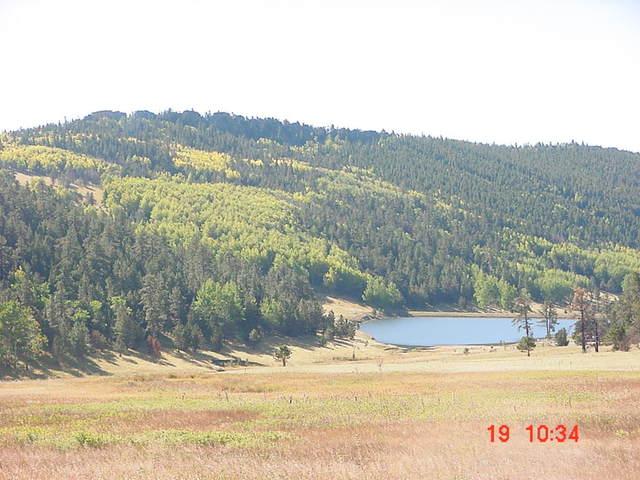Escalé las montañas de Colorado el diecinueve de abril, dos mil dos.