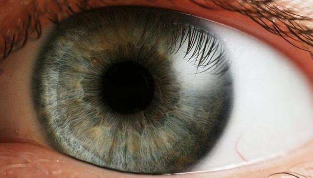 Implants de retina