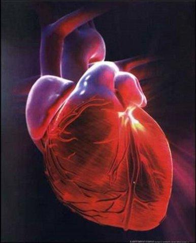 El primer trasplantament de cor