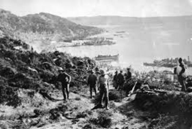 Allied troops landed in Gallipoli