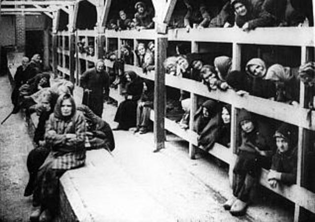 Los campos de concentración