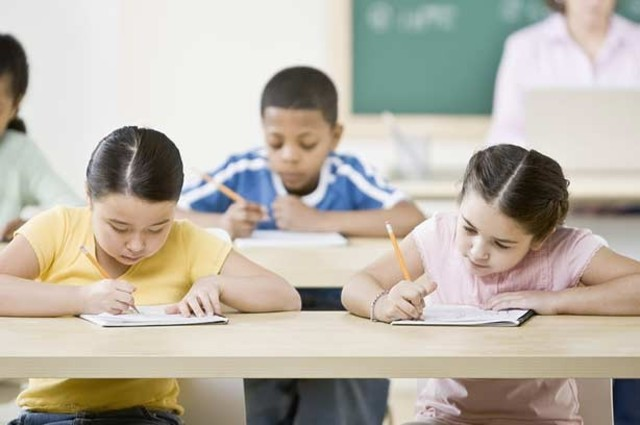 First Standardized Test: Cognative