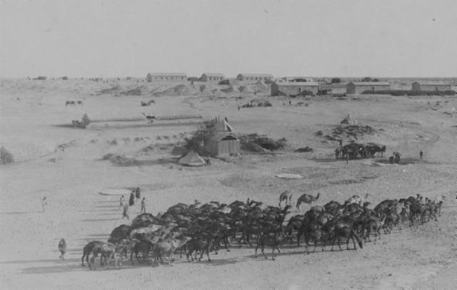 The Battle of Magdhaba