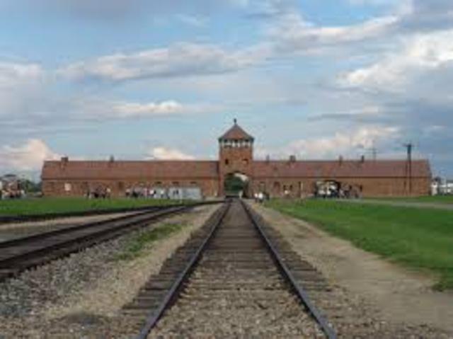 Auschwitz Opens