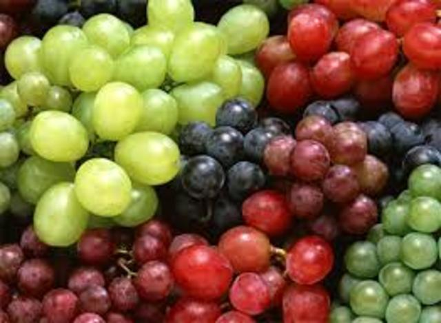 genoma de la vid (Vitis vinífera)