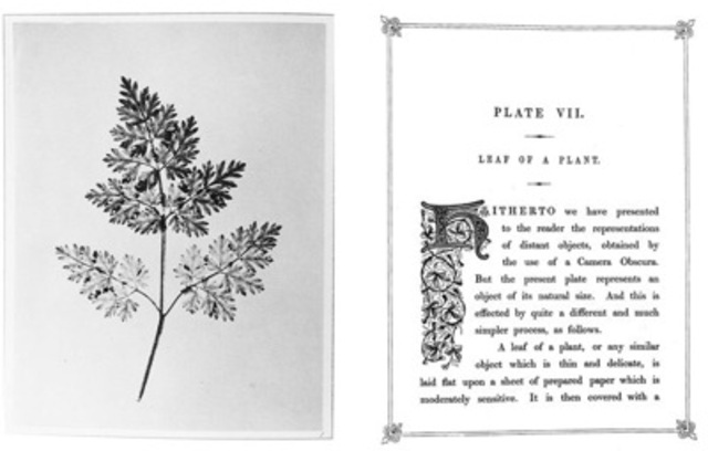 Pages from Talbot's The Pencil of Nature