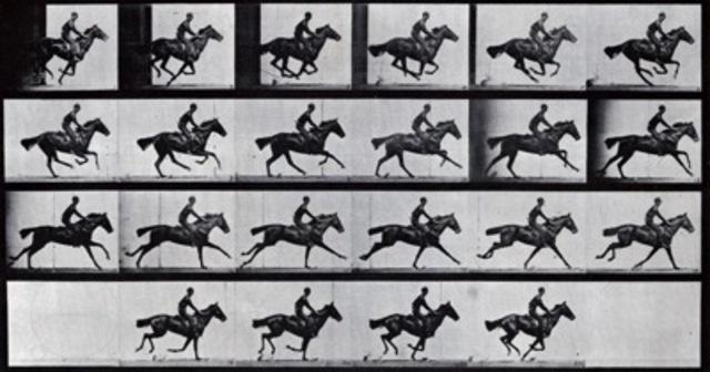 Eadweard Muybridge, plate published in The Horse in Motion,