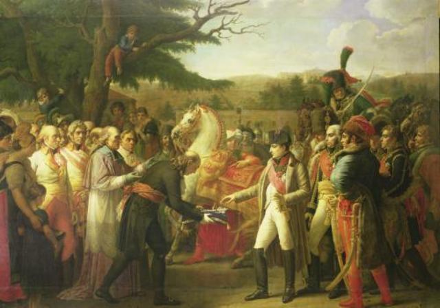 Napoleon enters Vienna