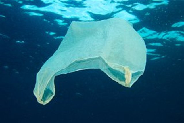 The reason why around the Australian ocean is polluted