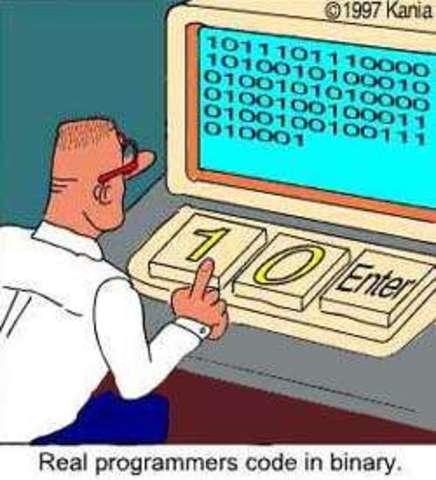 Aparecieron los Real Programmers