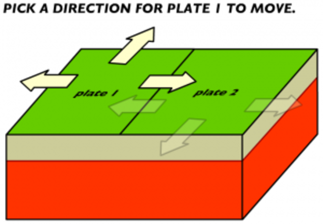 Online Plate Model Simulation Instructions