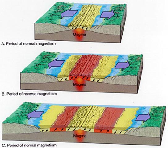 Paleomagnetism: Evidence of plate tectonics