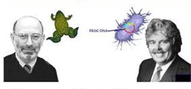 Cohen y Boyer descubren cómo cortar genes.