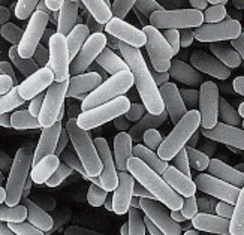 Luis Pasteur demuestra que los microorganismos son responsables de la fermentación.