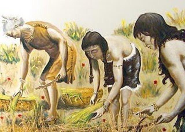periodo agricola ( 5500 años A.D.C.)