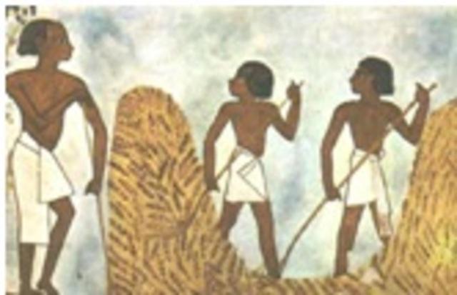 Incios de la Biotecnología 7000 a.C.