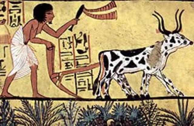 (8000 A.C.) La Revolución Agrícola como inicio de la Ingenieria