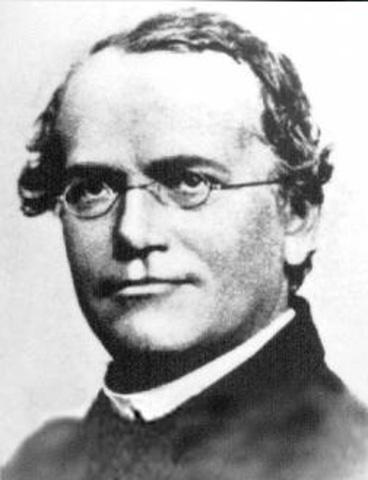 Karl Ereky